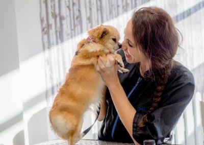 honden_trimsalon_venlo_12